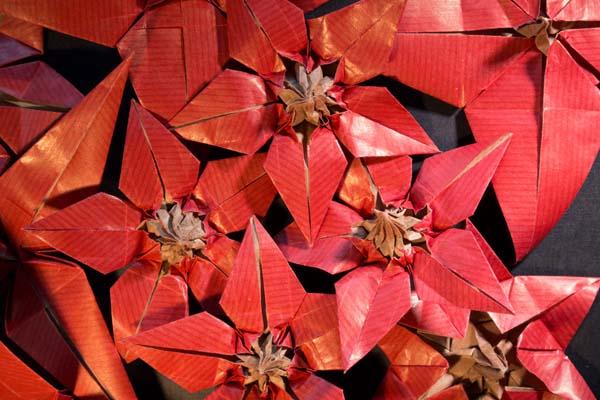 Origami Poinsettia/4-petal Flower 折纸一品红(1) - YouTube | 400x600